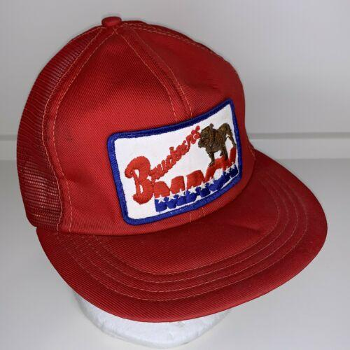 Vintage Mack Truck Patch Red/White/Blue Snapback Hat Made in USA Bruckner's